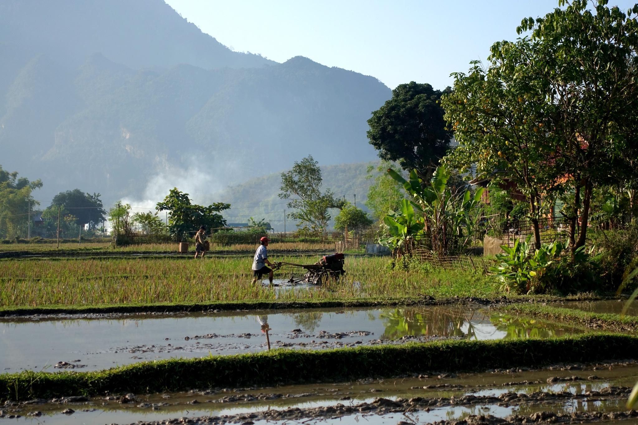 Mai Chau ehk taastumine Hanoist