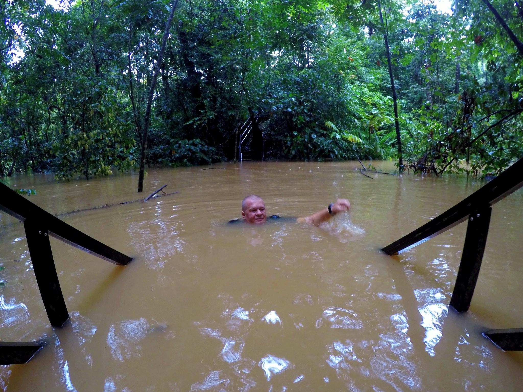 Džungliseiklused Malaisia roheluses
